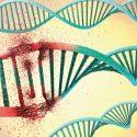 (Epi)Genetik der Angst